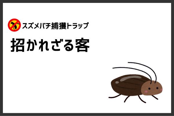 好き ゴキブリ 綺麗
