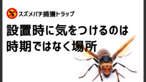 スズメバチ捕獲トラップは6月以降設置してはいけないって本当?