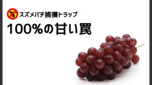誘引液の材料対決『ファンタグレープ vs 果汁100%ぶどうジュース』
